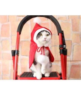 New Year Christmas Teddy pet cat and dog fleece re...