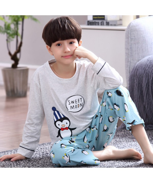 boys Cartoon long sleeve  Cotton pajamas for autumn pyjamas